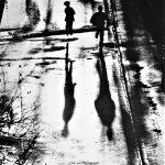 Nach Gewitterregen: Lichterfänger, Schattenspringer
