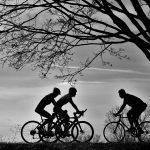 Radfahrer im Gegenlicht